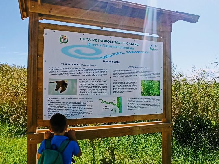 un bambino che legge un pannello all'oasi del simeto