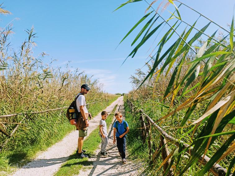 sentiero riserva naturale simeto