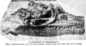 tête d'Ichthyosaure découverte par Albert Sallerin en 1913 à Metz