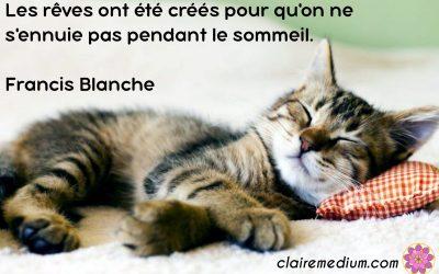 Citation de la semaine : Francis Blanche