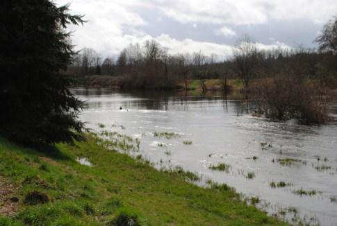 lac Washington seattle marymoor park