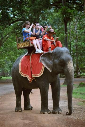 temples d'angkor éléphants cambodge