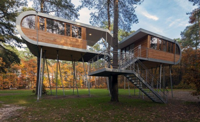 treehousearchitecture46