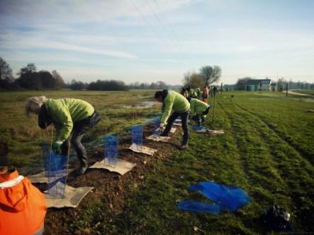 Plantons pour la Planète Fondation Yves Rocher