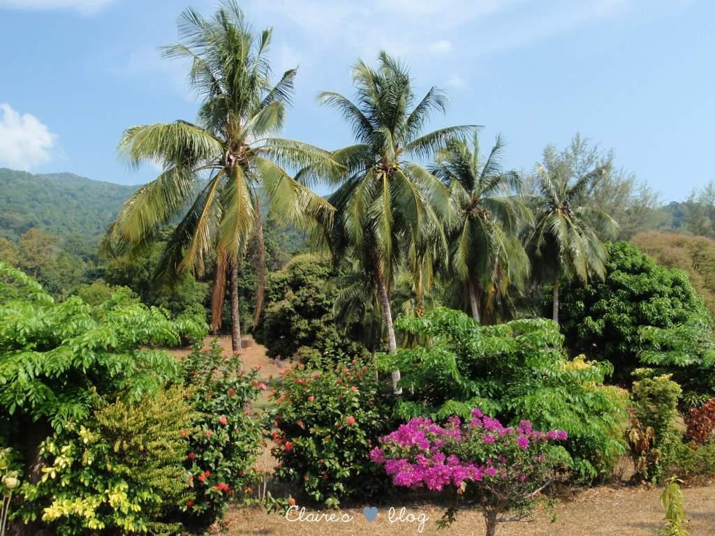 Tioman Island - Malaisie