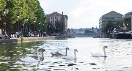 marin d'eau douce canal saint martin bateau sans permis paris (15)