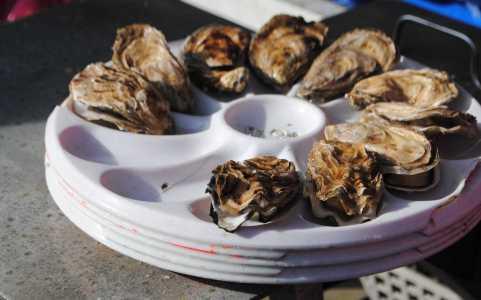manger des huîtres à cancale
