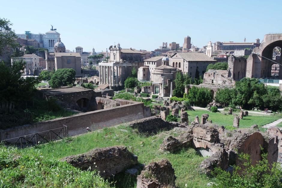 le forum palatin rome (5)