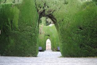 andalousie alhambra espagne grenade (10)