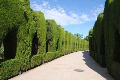 andalousie alhambra espagne grenade (3)