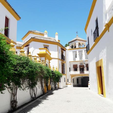 arenes séville espagne andalousie plaza de toros (2)