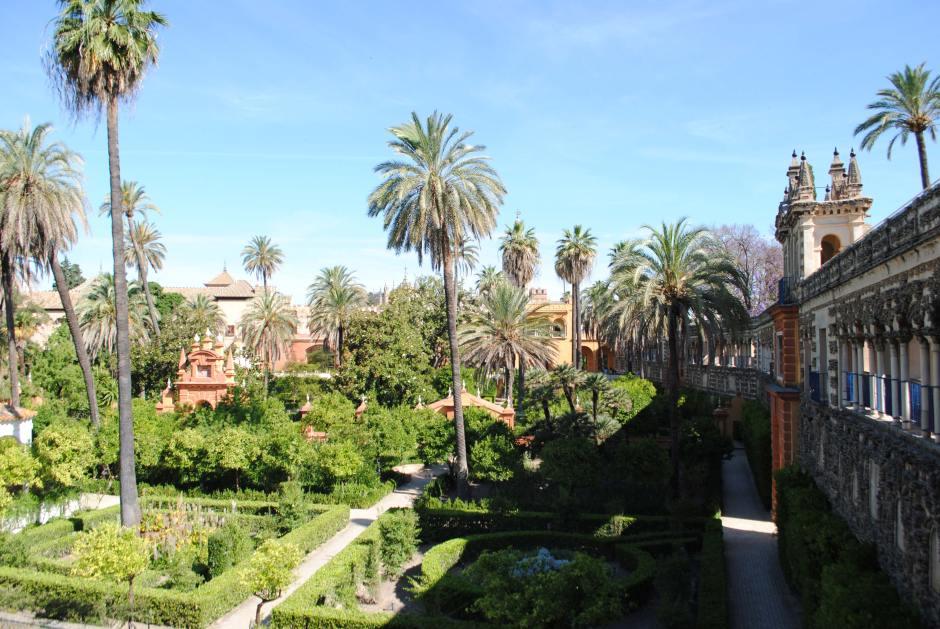 seville alcazar espagne (13)