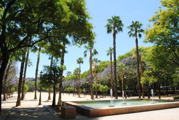 seville espagne andalousie top 10 (4)