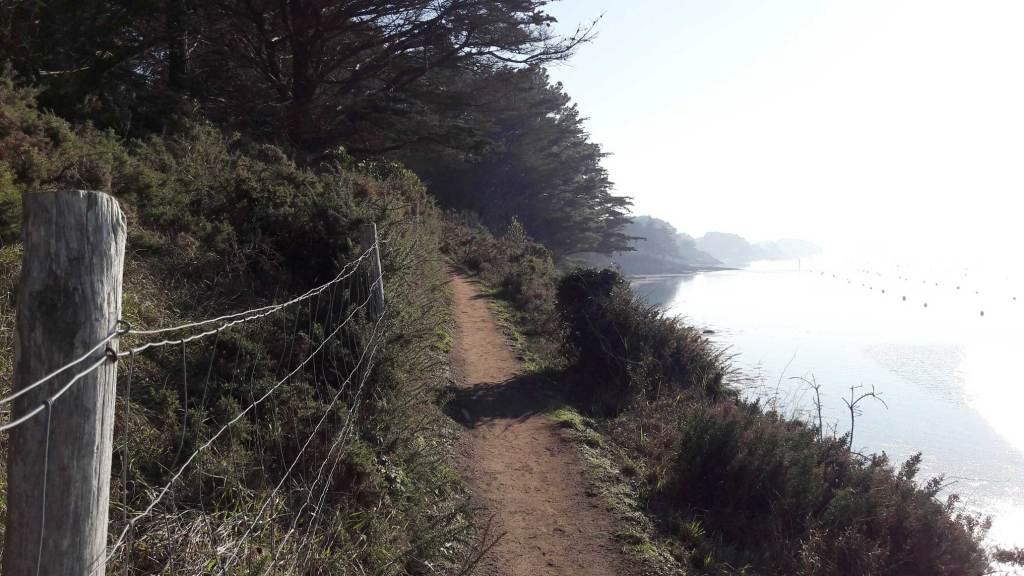 quoi faire à l'île aux moines bretagne