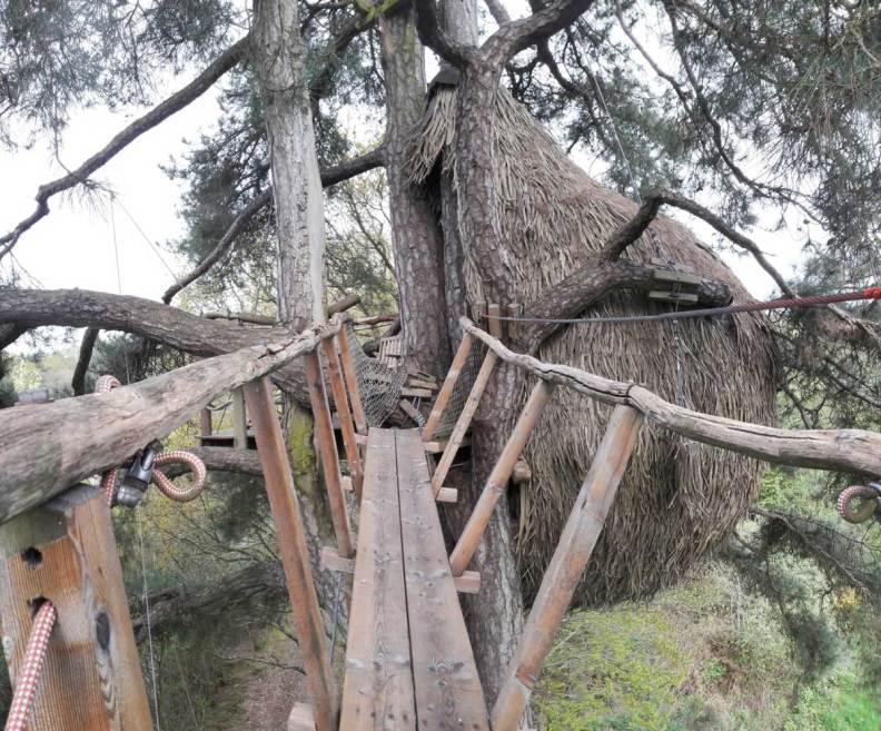 cabane dans les arbres domaine des ormes bretagne hebergement insolite (10)