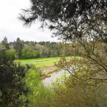 cabane dans les arbres domaine des ormes bretagne hebergement insolite (9)