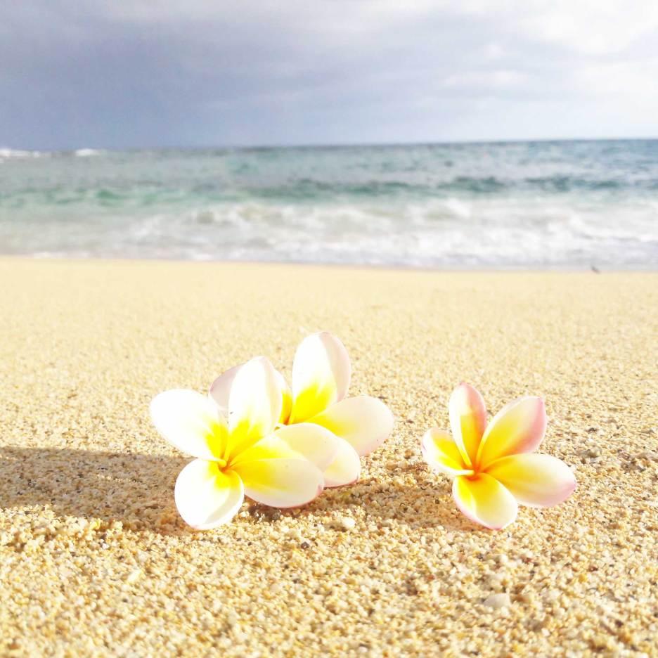 kauai-hawaii-clairesblog-(412)