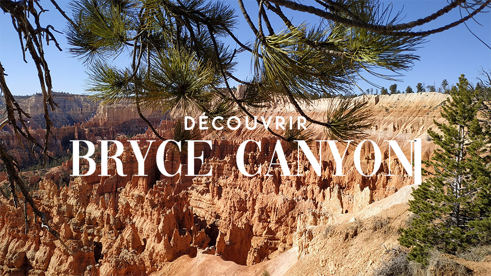 découvrir bryce canyon