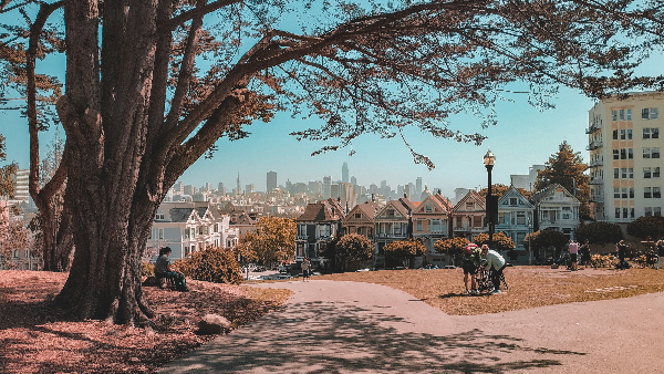 san francisco preset lightroom gratuit