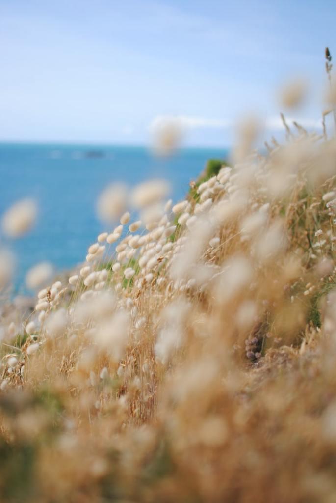 Pointe de la Varde Saint Malo bretagne