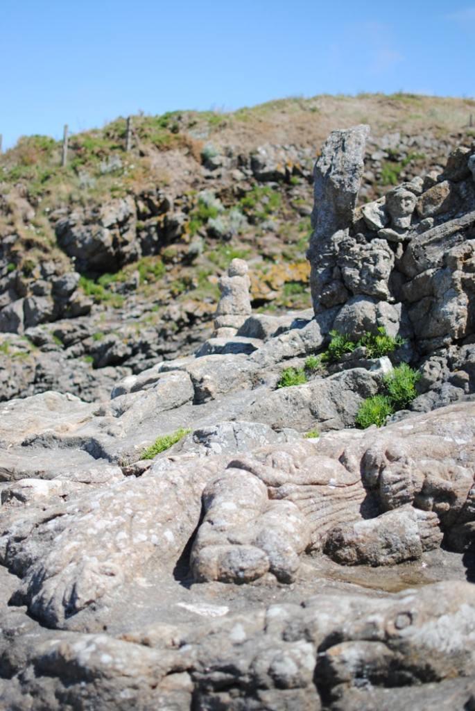 Rochers Sculptés Rothéneuf Saint Malo Bretagne