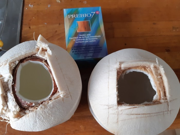 The probiotics are going to multiply during the night into the coconut water
