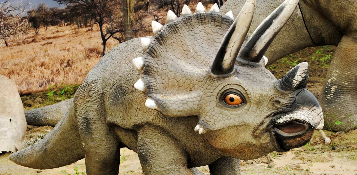 Dinosaurios_Park,_Triceratops_young_1356