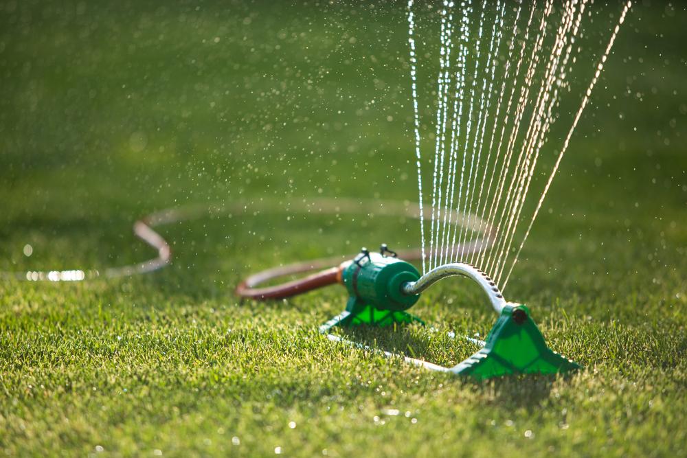 Backyard Spinkler Summer Fun