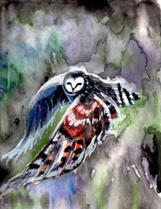 Watercolor of owl