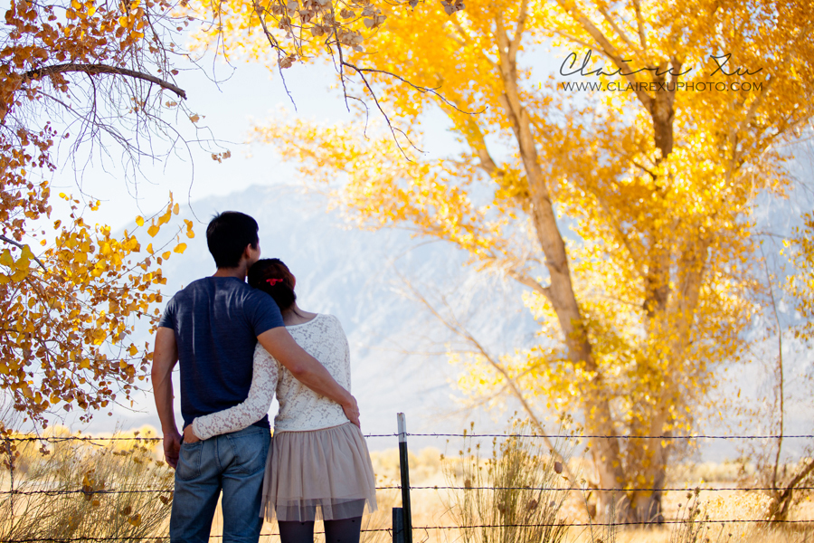 Eastern_Sierra_Fall_Freeway_395_Engagement-24