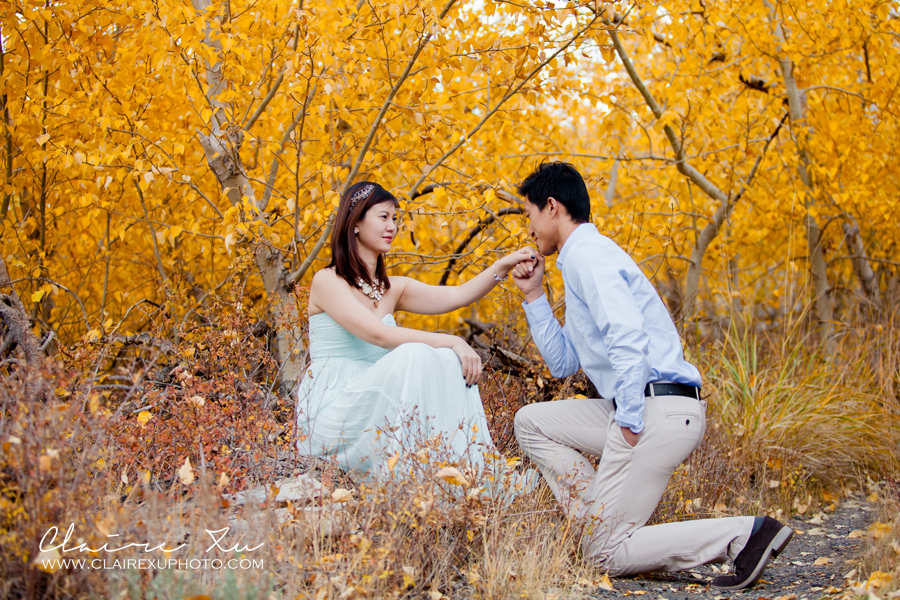Eastern_Sierra_Fall_Mammoth_Lake_Engagement-17