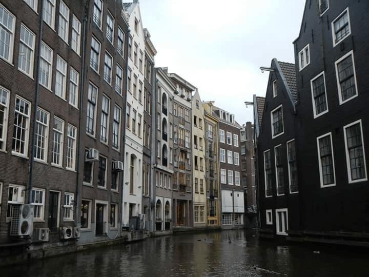 Balade sur les canaux d'Amsterdam