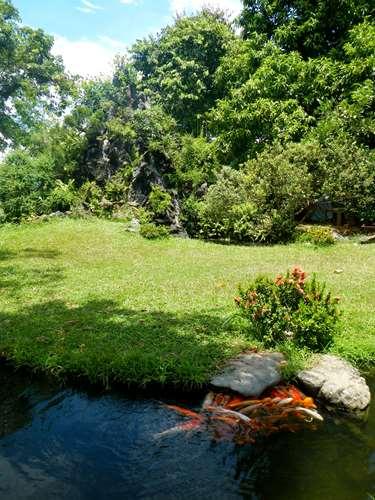 Claironyva Vientam Hue Jardin de la Pagode de Thien Mu, Hue