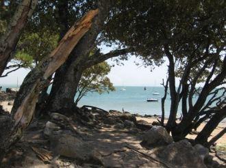 Noirmoutier - Régate du Bois de la Chaise Vendée