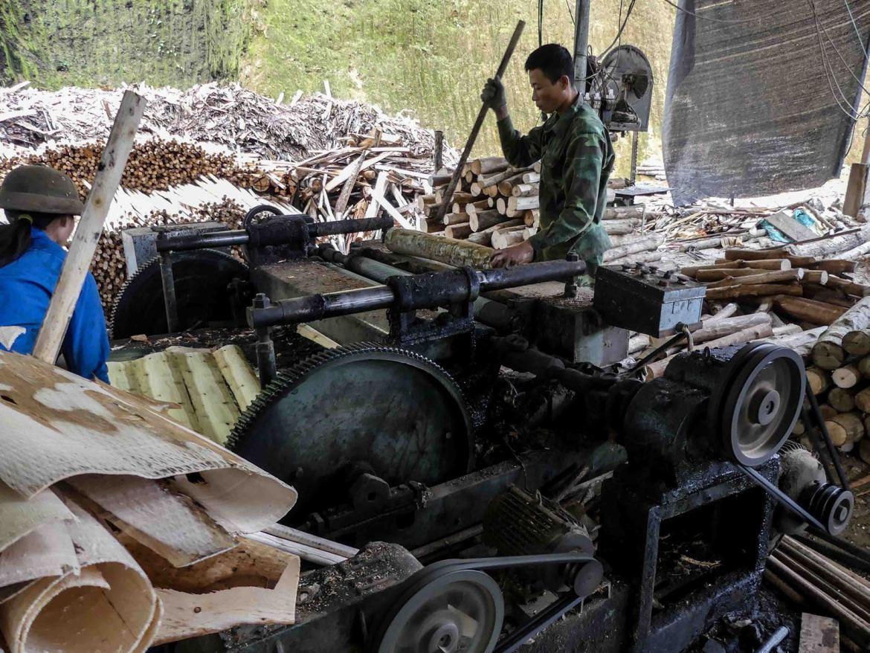 Claironyva Vietnam Sapa Usine Bois