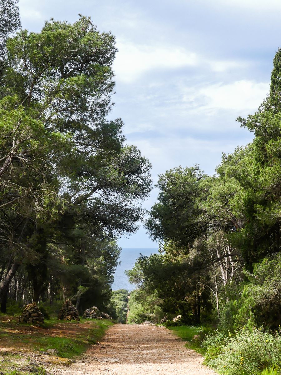claironyva italie pouilles salento parc regional Porto Selvaggio