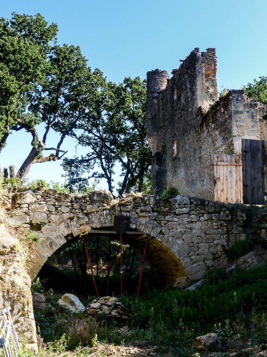 Tarn Château de Montfa