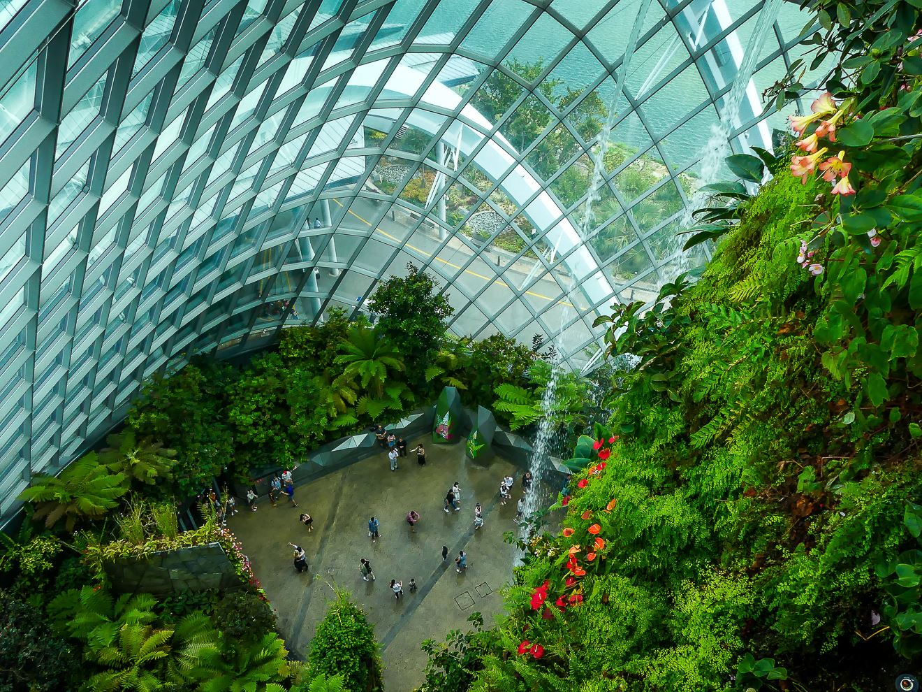Cloud Forest - Singapour