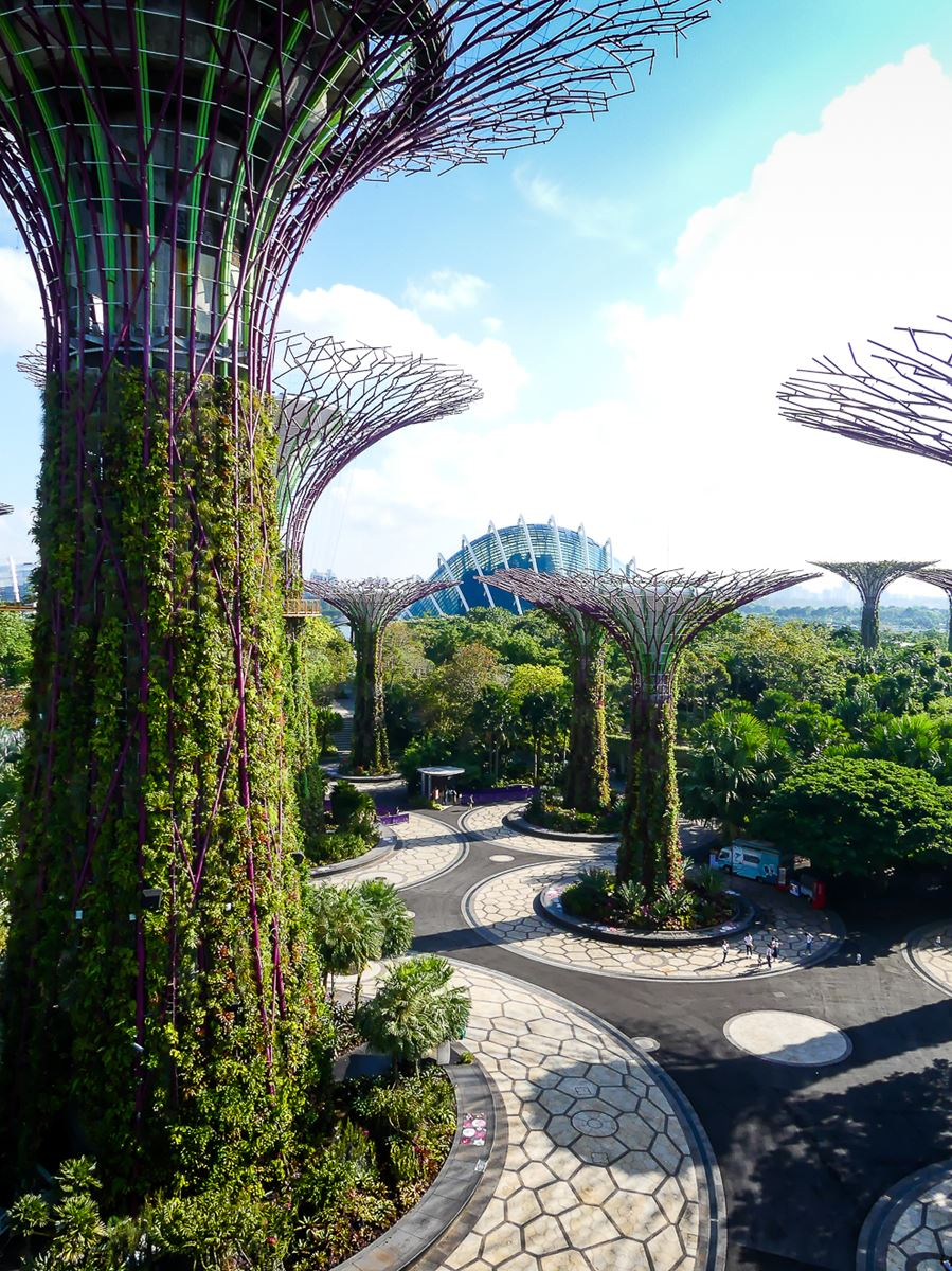 Super Trees Gardens by the Bay Singapour