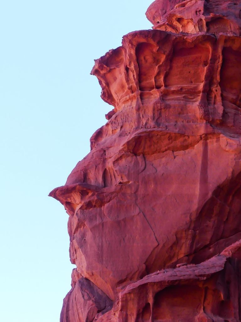 Wadi Rum - Arrêt 3 - oiseau ou roi ?