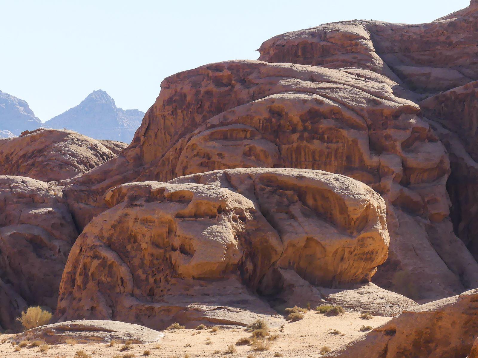 Wadi Rum Forme lapin