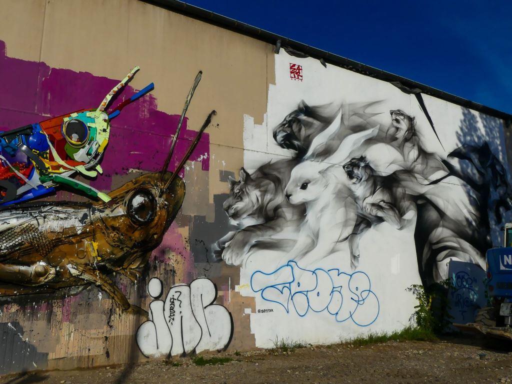 Street Art Lyon SATR