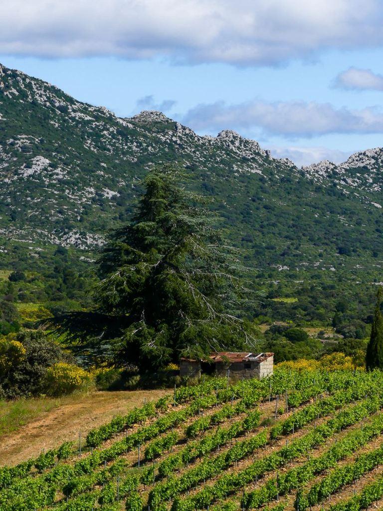 Jolie route des Pyrénées Orientales