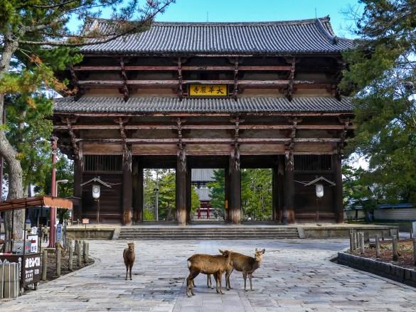 Nara - Porte Nandaimon