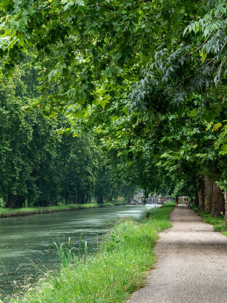 Canal latéral à la Garonne - Moissac