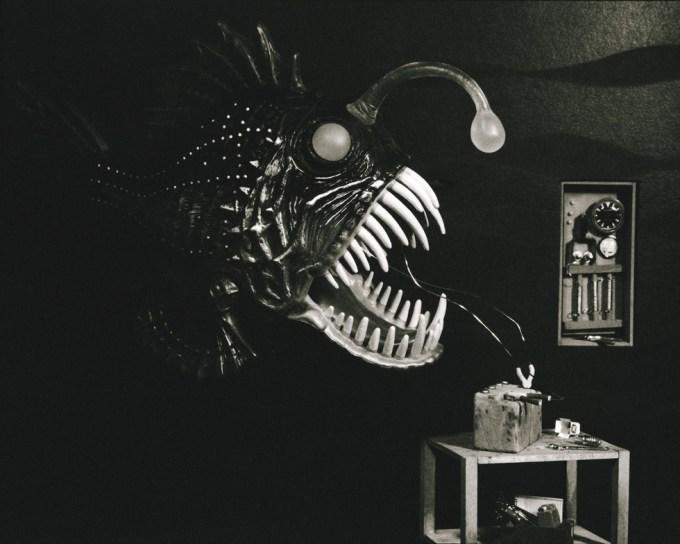Lori Nix, Angler Fish