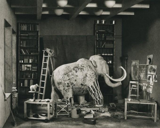 Lori Nix, Mastodon