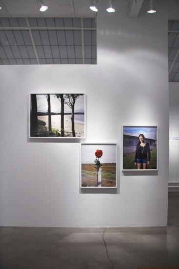 Amy Stein and Stacy Arezou Mehrfar, Tall Poppy Syndrome Exhibition