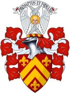 john-carruthers-of-howmains-armorial-copy.jpg