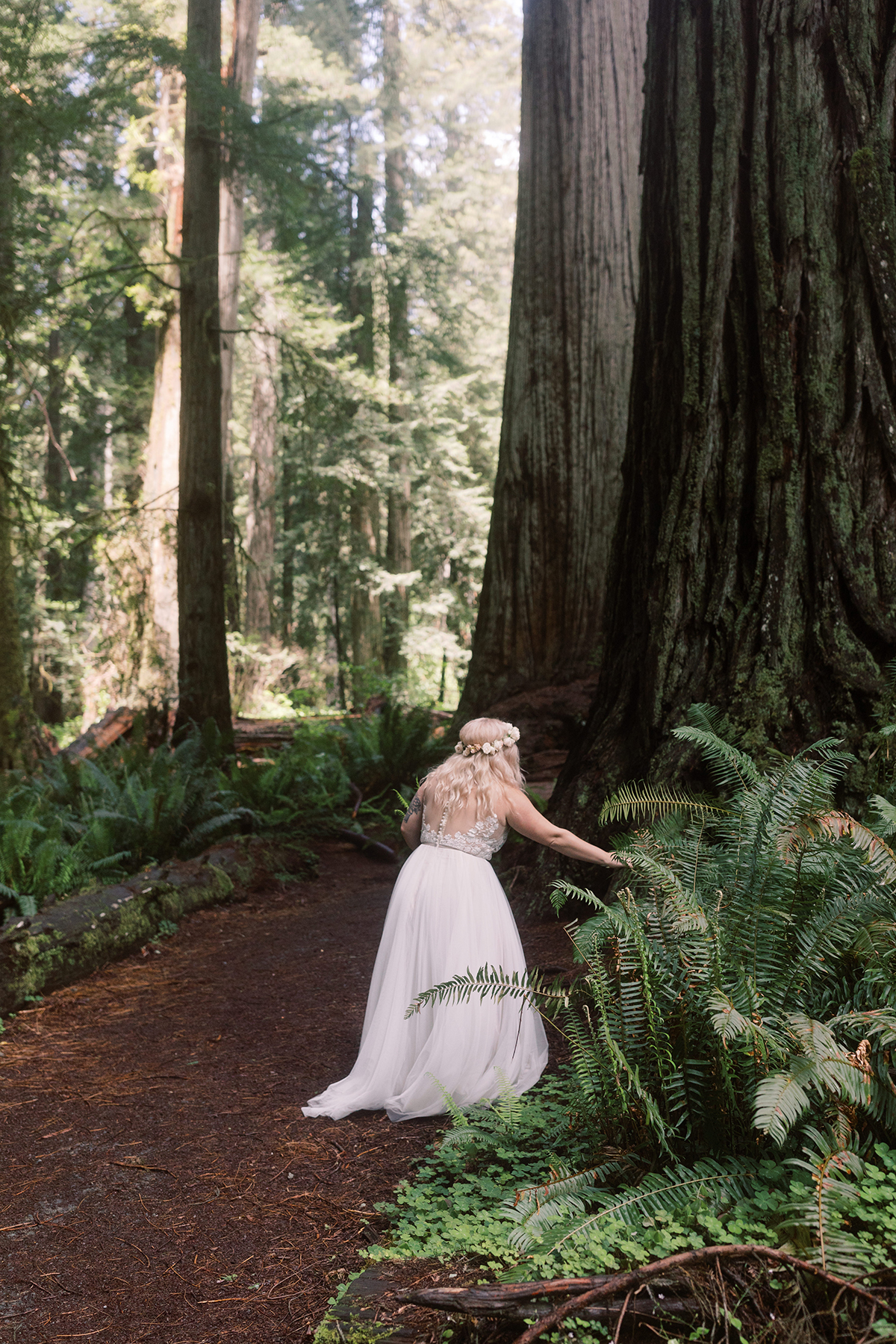 Prairie-Creek-Redwoods-State-Park-wedding-elopement-photos-04